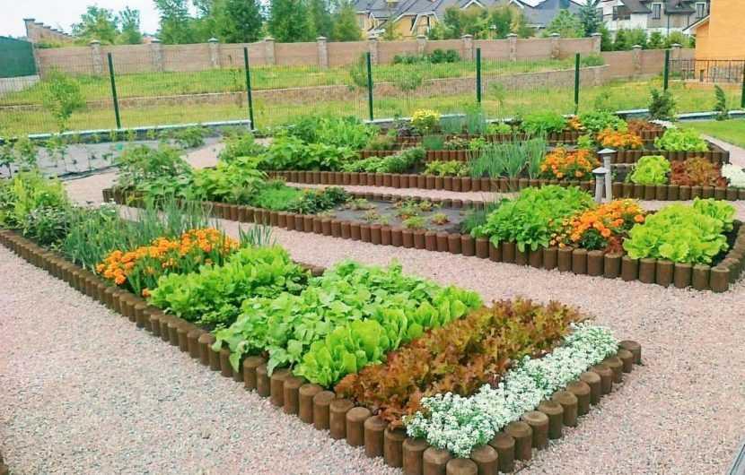 Планировка огорода на дачном участке: примеры лучших реализованных идей как спланировать и обустроить огород на даче